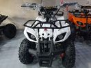 Dirt Motos  HUNTER 50cc MIZA