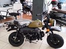 Skyteam  MONKEY 125cc & 50cc