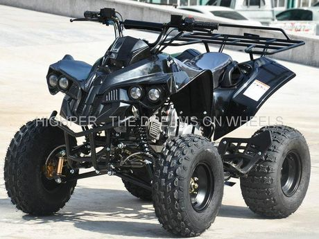 nitro atv quad warrior 125 39 17 720 eur. Black Bedroom Furniture Sets. Home Design Ideas