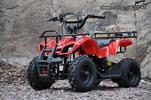 Dirt Motos  ATV electric 800W