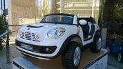 Mini  COOPER BEACHCOMBER ORIGI12V XL
